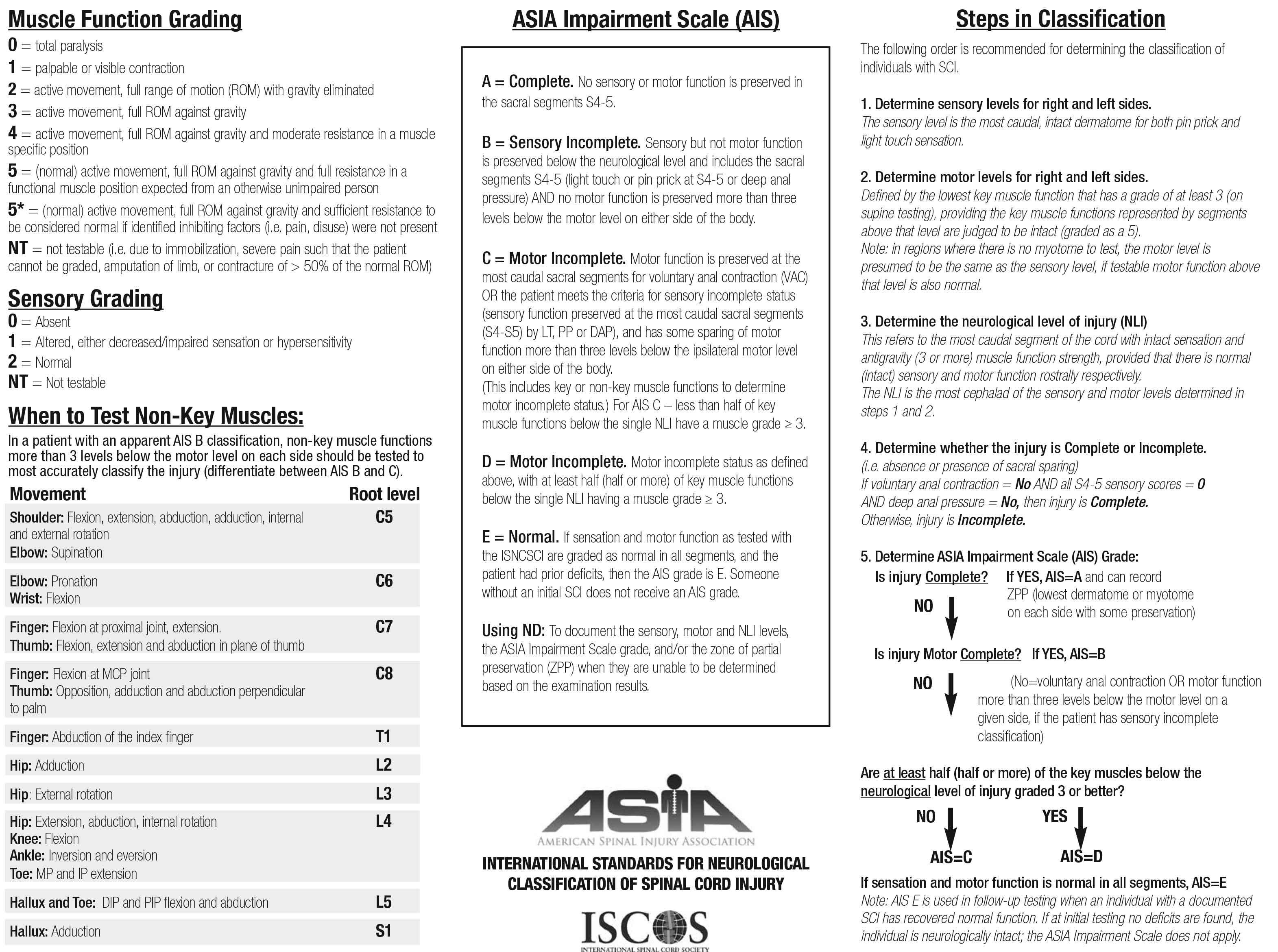 Asia Spinal Cord Injury Worksheet