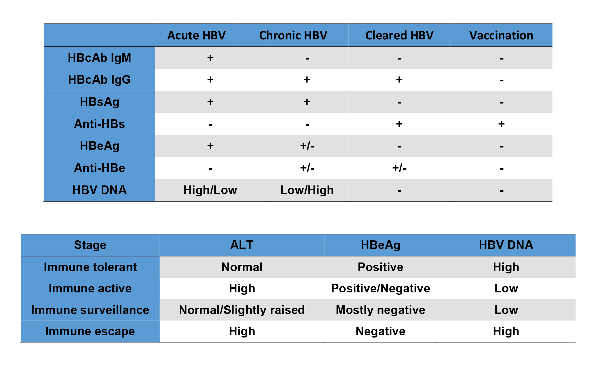 Hep B Serology Viral Markers