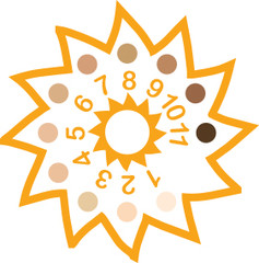 SunFriend Skin Chart