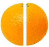 vodka jelly shots in an orange