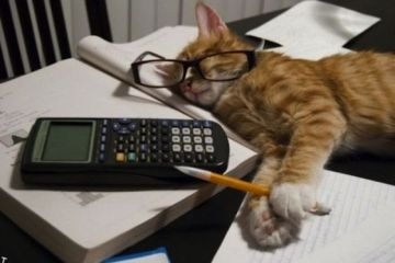 exam hacks