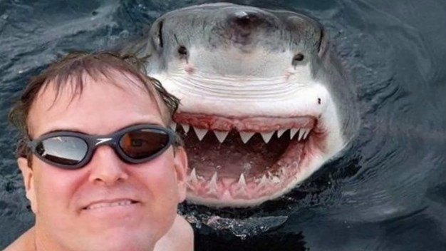 shark-selfie