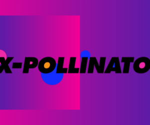 x-pollinator theatre irish film industry