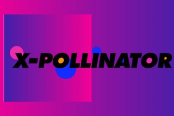 x-pollinator theatre irish film industry