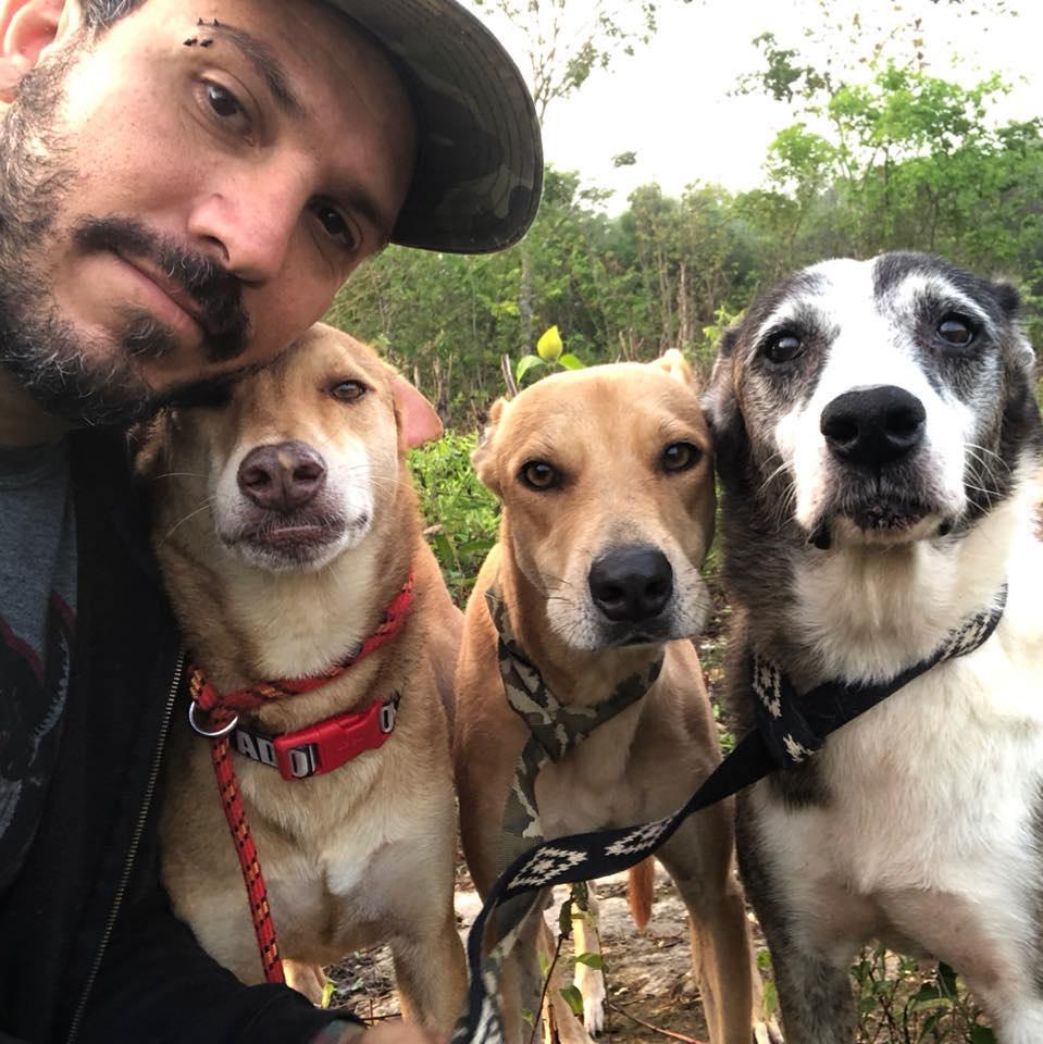 Hombre resguarda a perritos callejeros en su casa por el huracán Delta