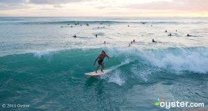 Sunset Surfing in Waikiki, Oahu, Hawaii