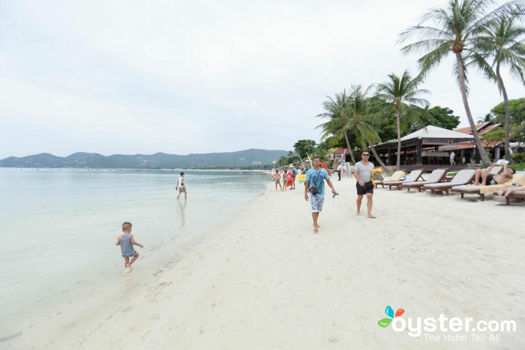 Chaweng Regent Beach Resort Beach At The Chaweng Regent