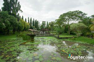 Grounds at The Chedi Club Tanah Gajah a GHM Hotel