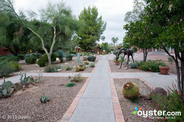 Canyon Ranch, Tucson