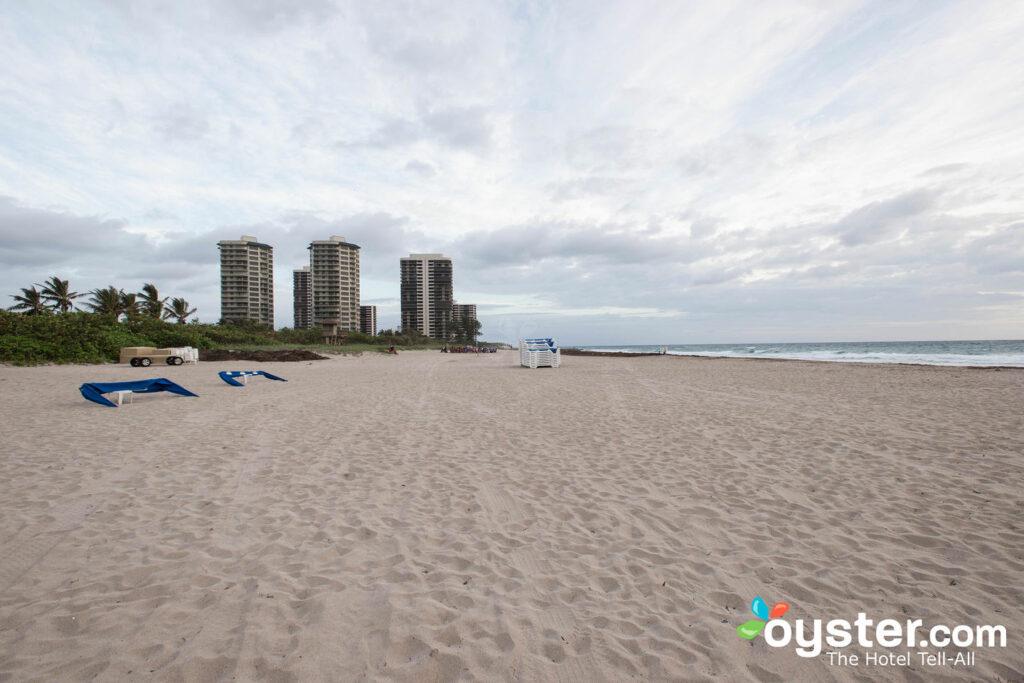 Playa en Palm Beach Marriott Singer Island Beach Resort & Spa / Oyster