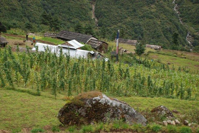 Sengma, il villaggio dove è cresciuto Pemba