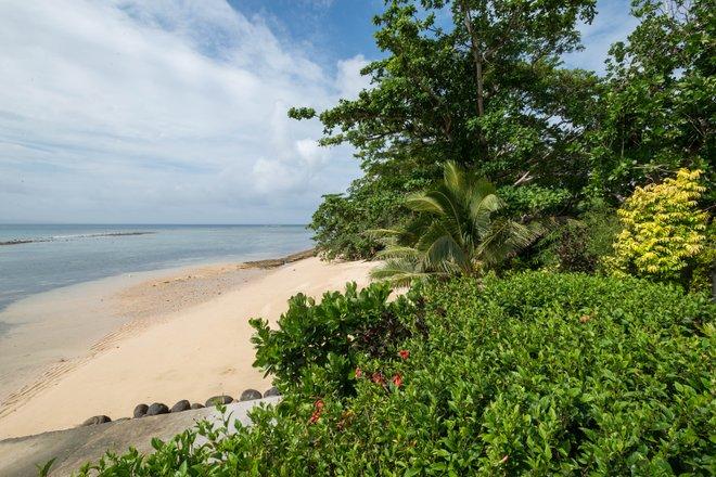 The Beach Villa Pool en el Taveuni Palms Resort / Oyster