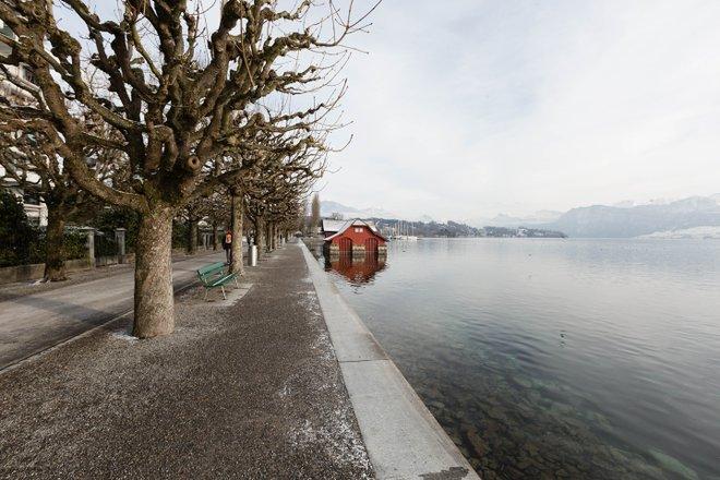 Palacio Luzern / Oyster