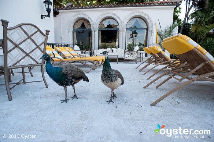 El resort en Fisher Island Club, Miami