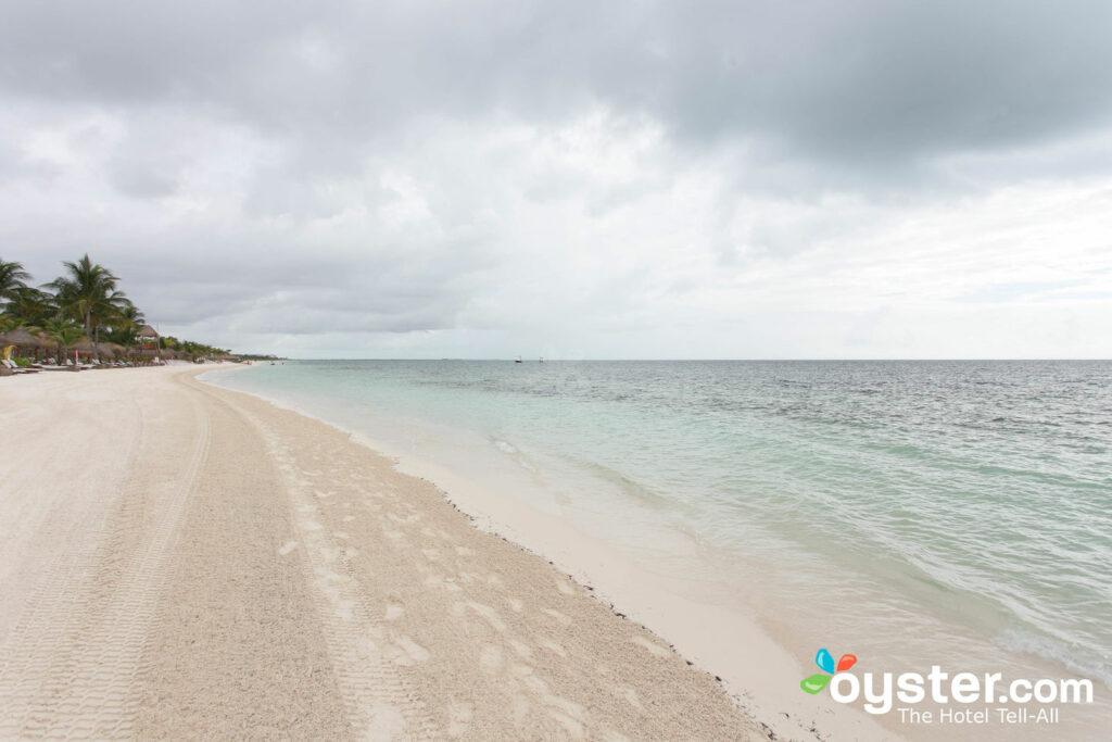 Amato Playa Mujeres / Oyster