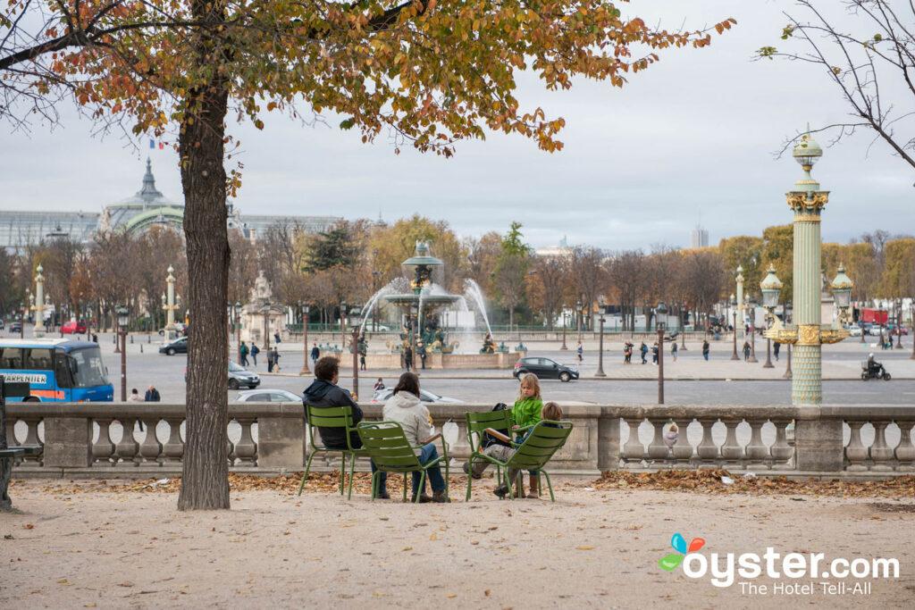 Jardins des Tuilleries, Paris/Oyster