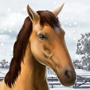 My Horse Android
