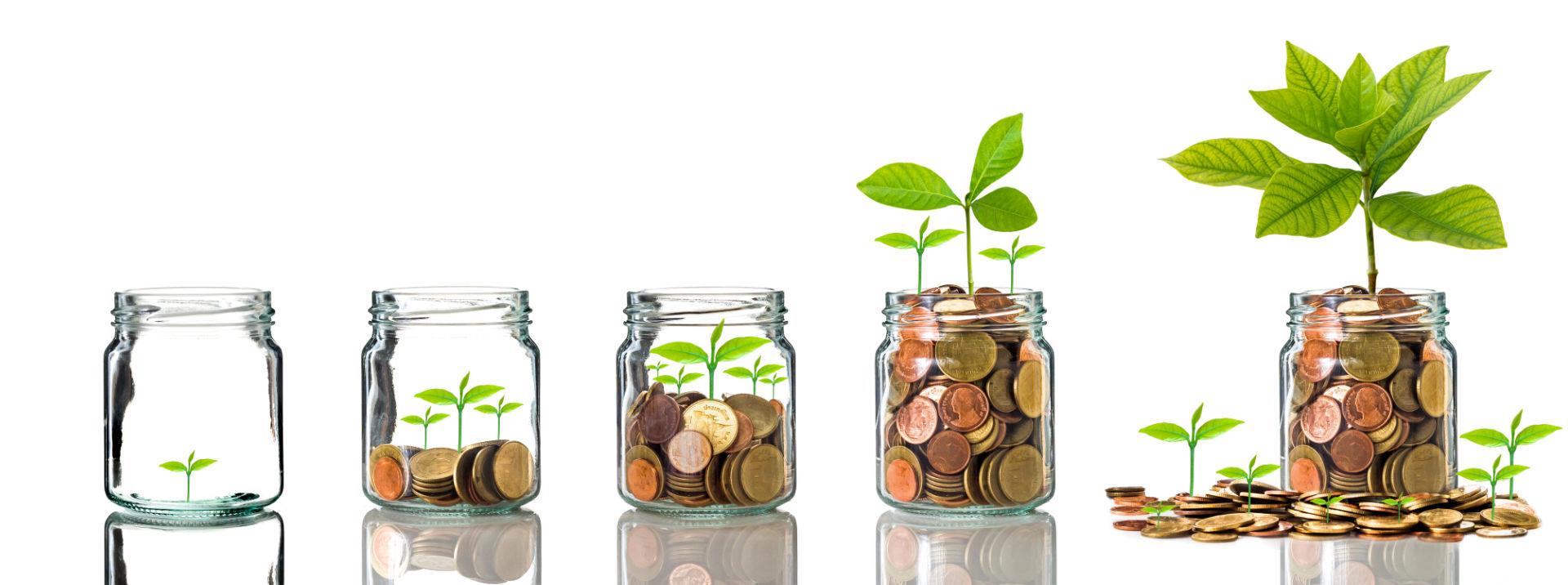 ozark bank personal savings
