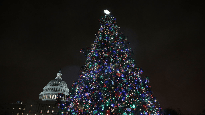 Capitol christmas tree_1510783291780.png