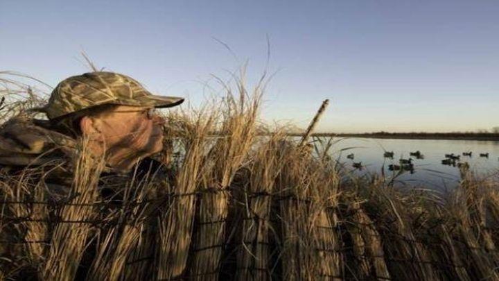 duck hunting_1511123780664.jpg