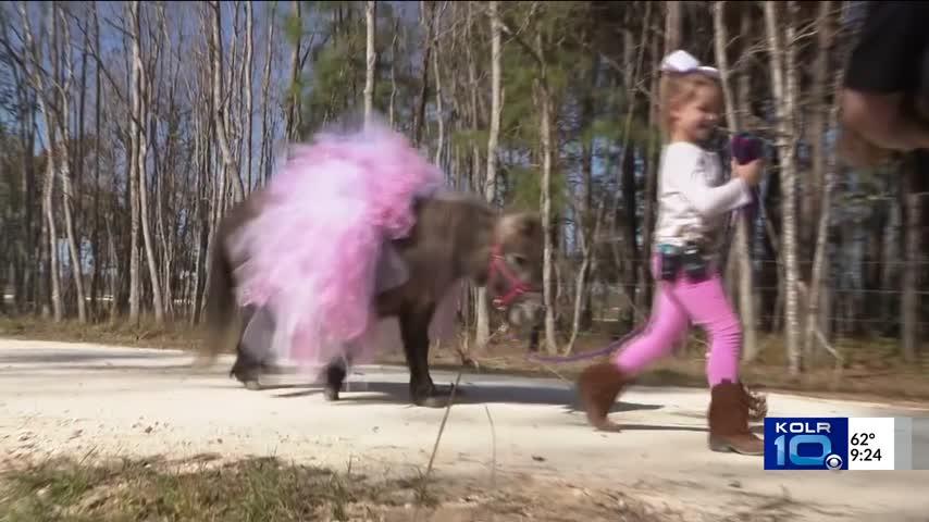 Pony Heals Broken Heart of Texas Girl 2_10808193