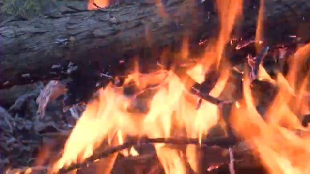 wildfire_1511955966060.jpg