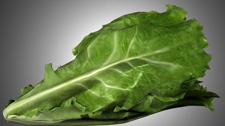 romaine lettuce_1515102368496.jpg.jpg