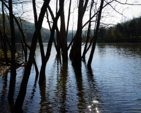 Table Rock Lake at Piney Creek Wilderness