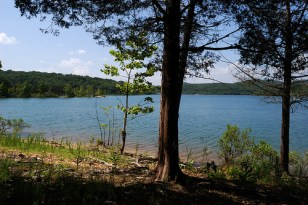 The shore and water of Table Rock Lake as seen from a campsite at Big Bay Recreation Area near Shell Knob, Missouri