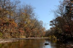 Woods Fork in the Fall