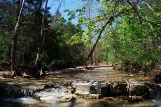 Ephemeral Creek at Busiek