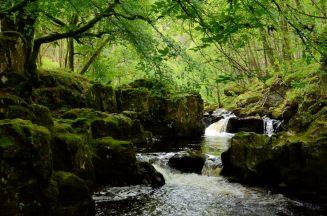 picture of the River Lednock showing the De'ils Cauldron, Comrie