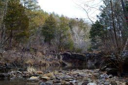 Long Creek looking towards the falls - Hercules Glades Wilderness