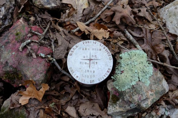 Survey Marker - near Coy Bald Trailhead