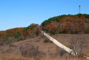 Glade Top Trail - Caney Watch Tower