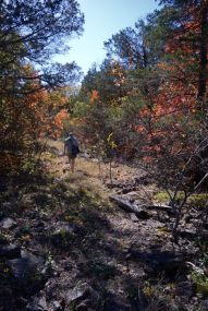 Gary on the Pees Hollow Trail, Hercules Glades Wilderness