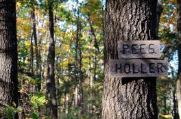 Sign for the start of the eastern section of the Pees Hollow Trail