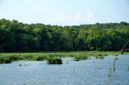 Photograph of Lake Springfield. www.ozarkswalkabout.com