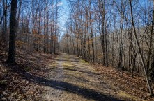 Silver Trail at Busiek State Forest