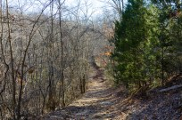 Heading back to the trail head