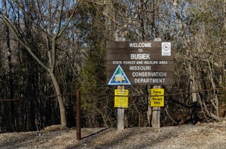 Busiek State Forest - South Parking Lot near the Trail Head