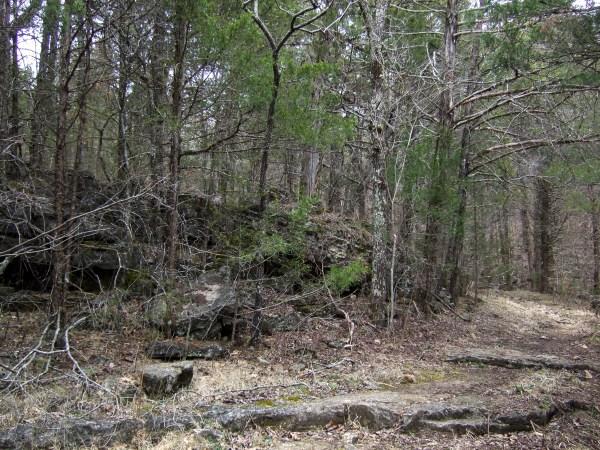 On the 'Van Trail' at Busiek