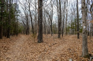 New signs and Trail Blazes at Hercules Glades. Be warned - Some trails have been re-named. March 23, 2018 | www.ozarkswalkabout.com | Copyright © 2018 Gary Allman, all rights reserved