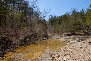 Looking upstream towards Brushy Creek and 'Cab Creek'.