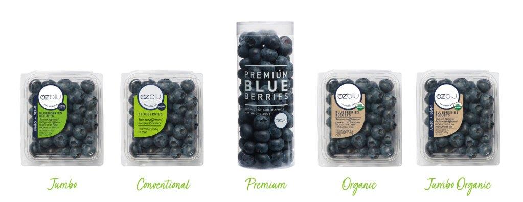 OZblu's Product Range: Jumbo, Organic, Premium, Conventional, Jumbo Organic