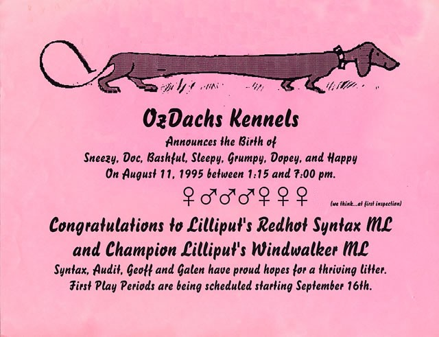 Ozdachs Kennels Litter announcement