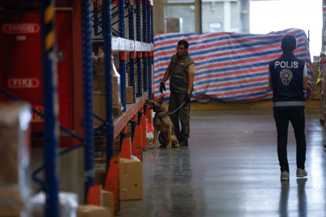 Havalimanlarının kargo bölümlerinde görevli patlayıcı madde tespit köpeklerine test