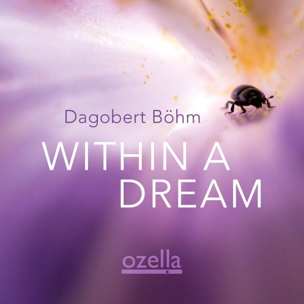 Cover Within A Dream