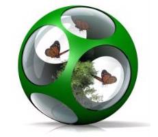butterfly-ball