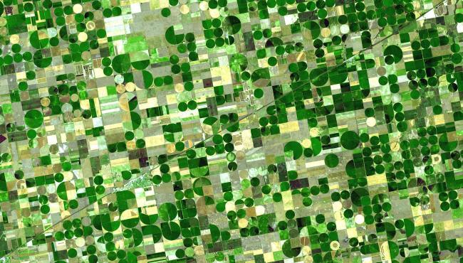 Campos de cereal en Kansas